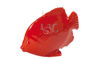 red fish candle