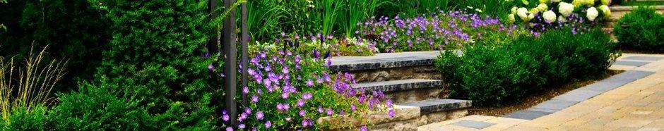 domestic garden maintenance 1