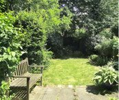 Garden Maintenance at Evergreen Landscapes at Golders Green, North london