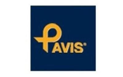 vendita corsetteria pavis