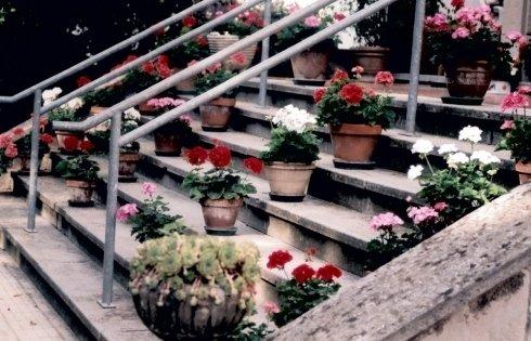 vasi scalinata villa