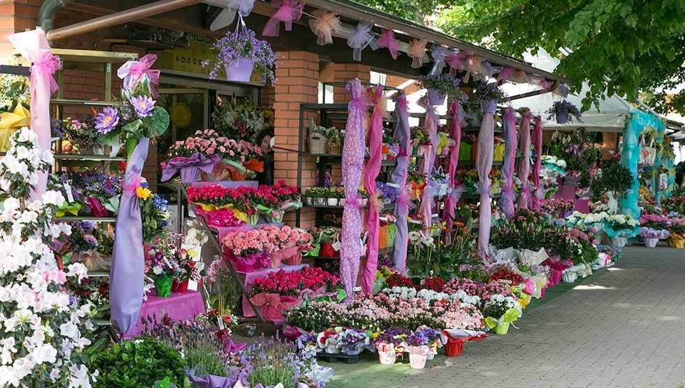 negozio fiori e piante Novara