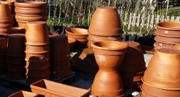 vasi in terracotta, vasi in plastica