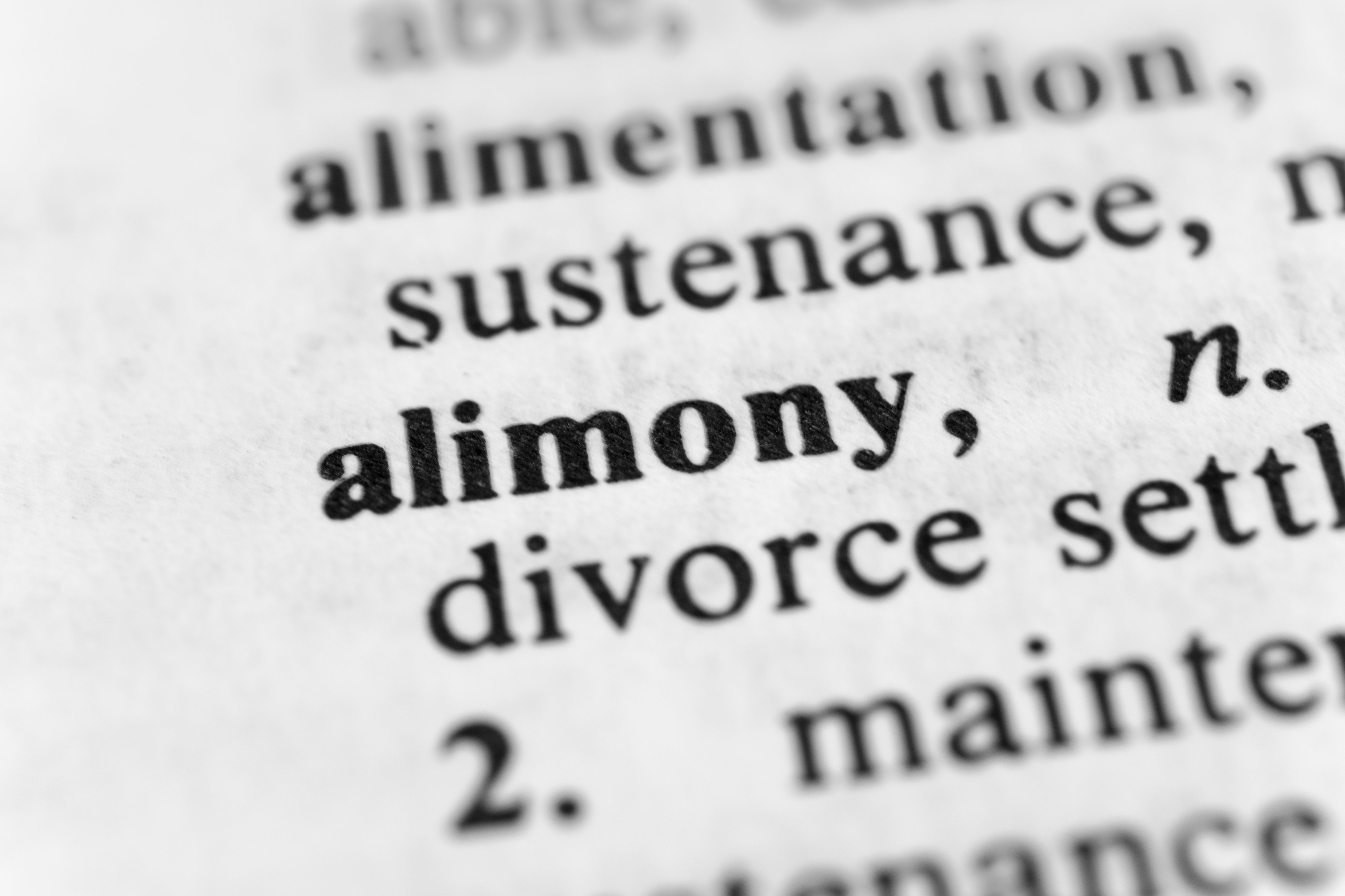 Alimony dictionary definition
