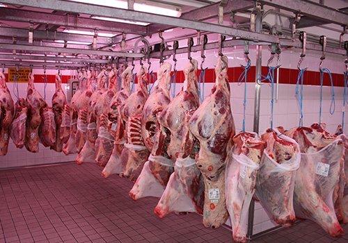 delle carni appese in una macelleria