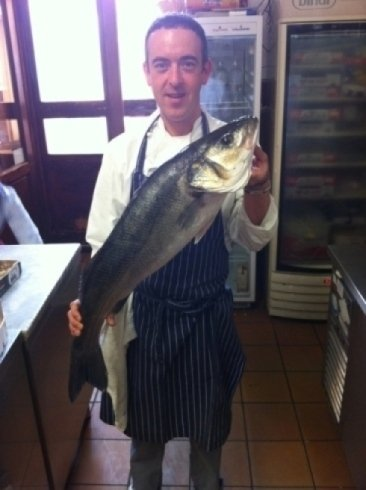 pesce ligure