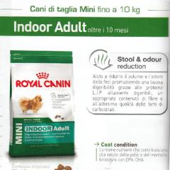 cani di taglia mini fino a dieci kg