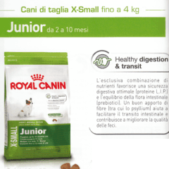 junior royal canin