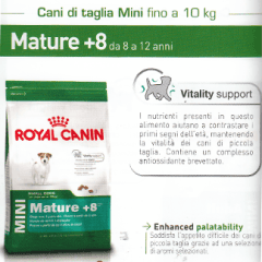 mature taglia mini
