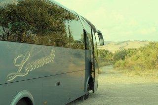 Noleggio bus trentotto posti a sedere