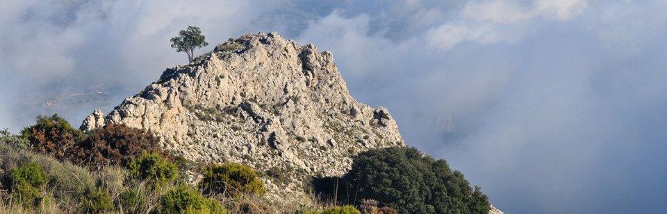Peaks of the Sierrra Aixorta