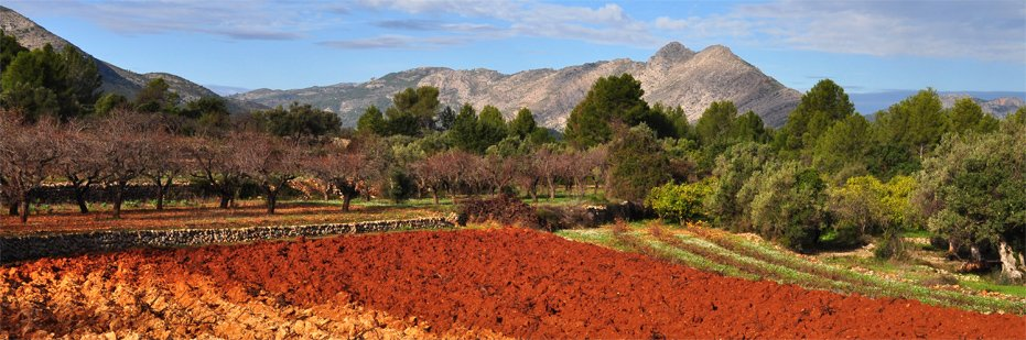 Jalon Valley farm land