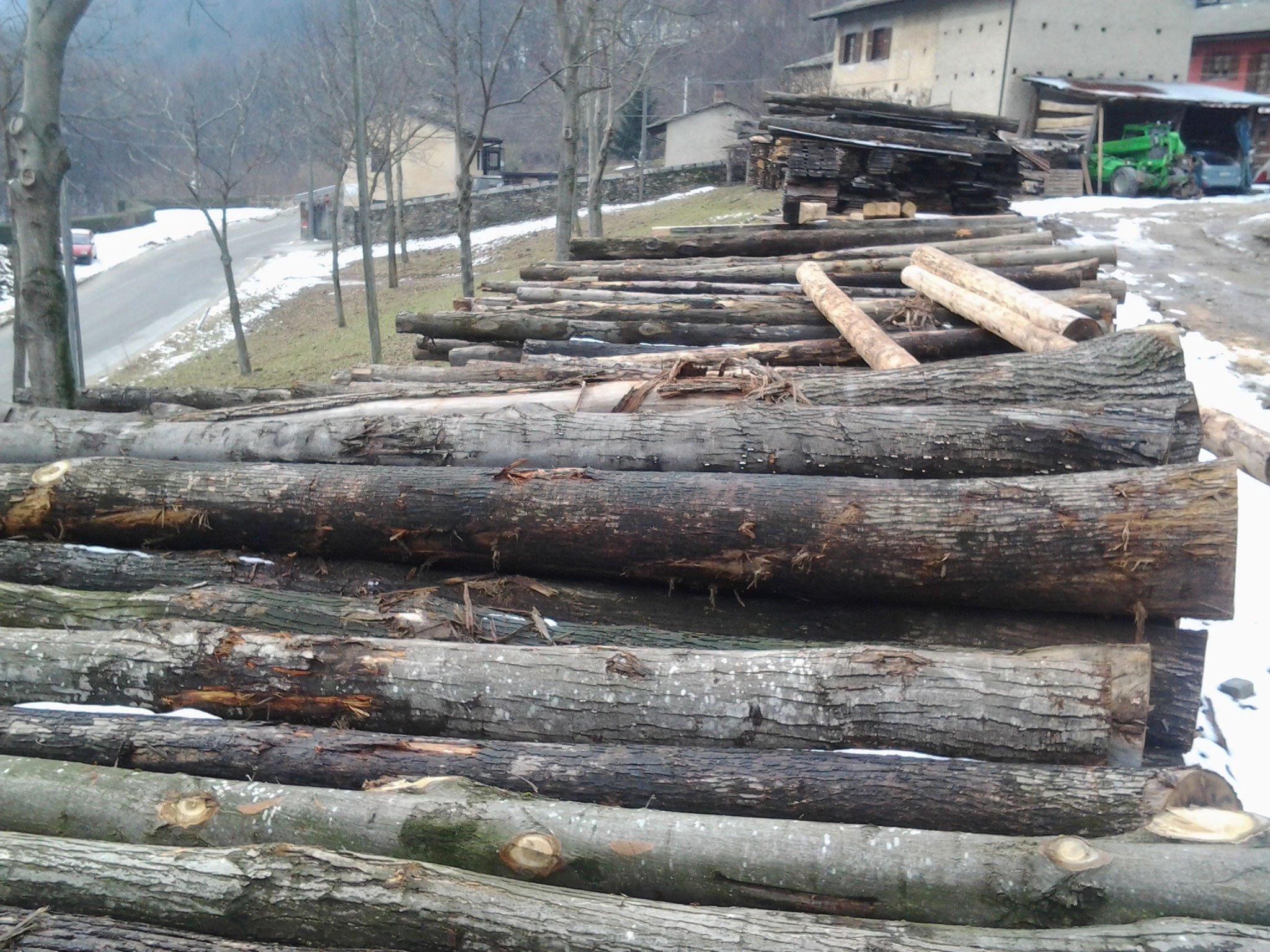 un insieme di tronchi d'albero