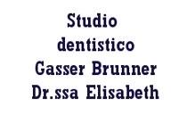 logo brunner