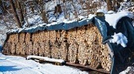 legna pretagliata da ardere