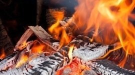 legna per pizzerie