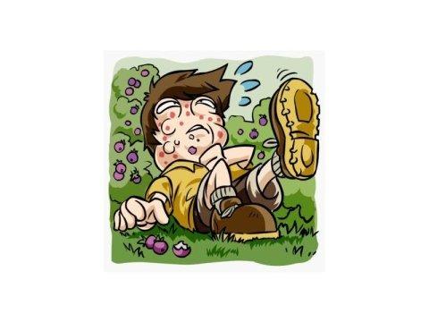 Allergia al veleno di insetti