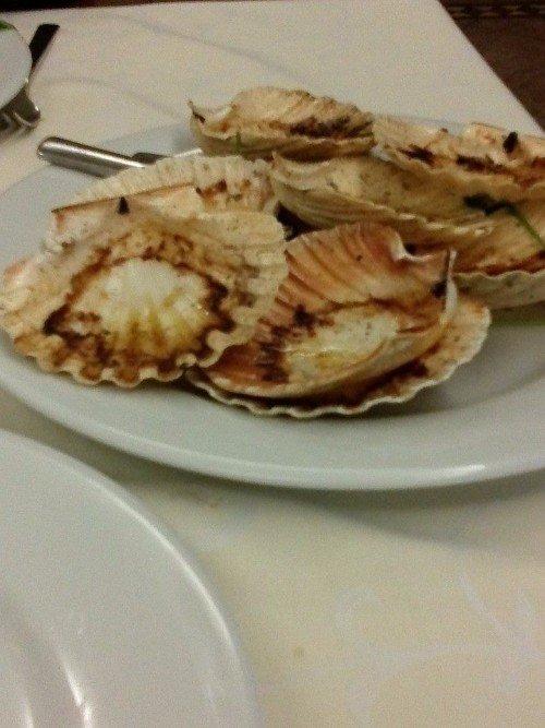 un piatto di ostriche