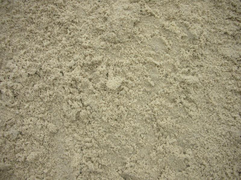 Gold Coast Sand