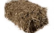 sugar cane mulch bale
