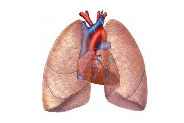 cardio pneumologia sportiva