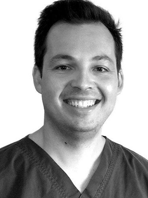 Dr Daniel Hauptfleisch, Dentist - B.D.S. (Otago)