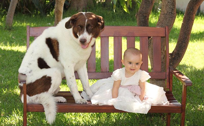 una bambina piccola su una panchina di un parco e accanto un cane