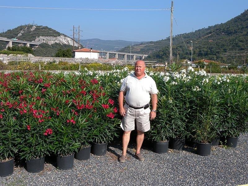 vendita fiori, cura delle piante, cura dei fiori