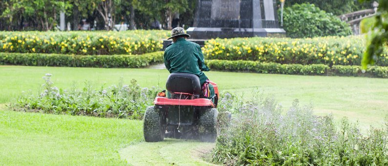 A man on a red ride-on mower, driving through a large garden edged with flowering plants and shrubs