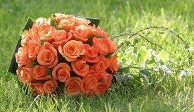 corone floreali