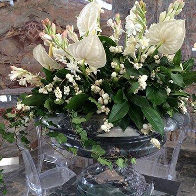 un vaso con delle piante con dei fiori bianchi