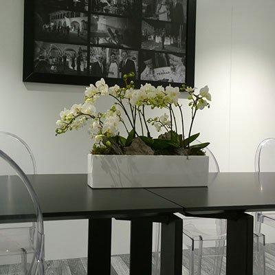 un vaso a forma rettangolare con i fiori bianchi