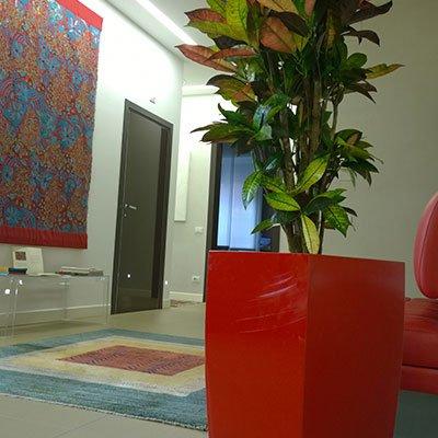 un vaso grande di color rosso un una pianta da interno