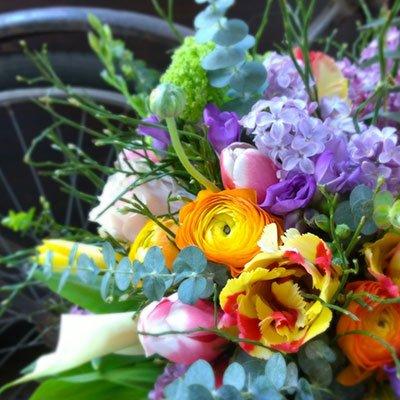 una composizione di fiori di diversi colori