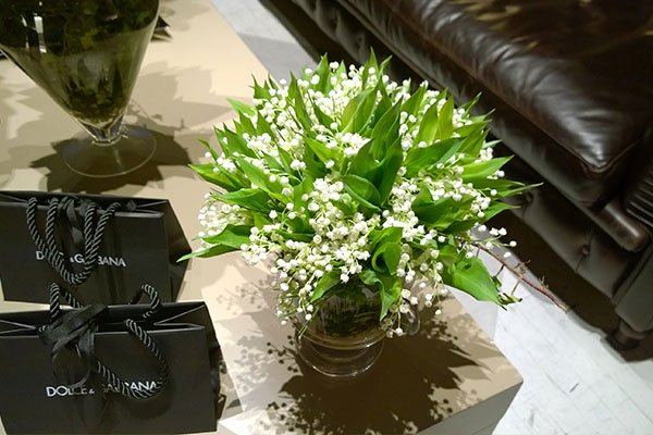 una composizione di fiorellini bianchi con foglie verdi