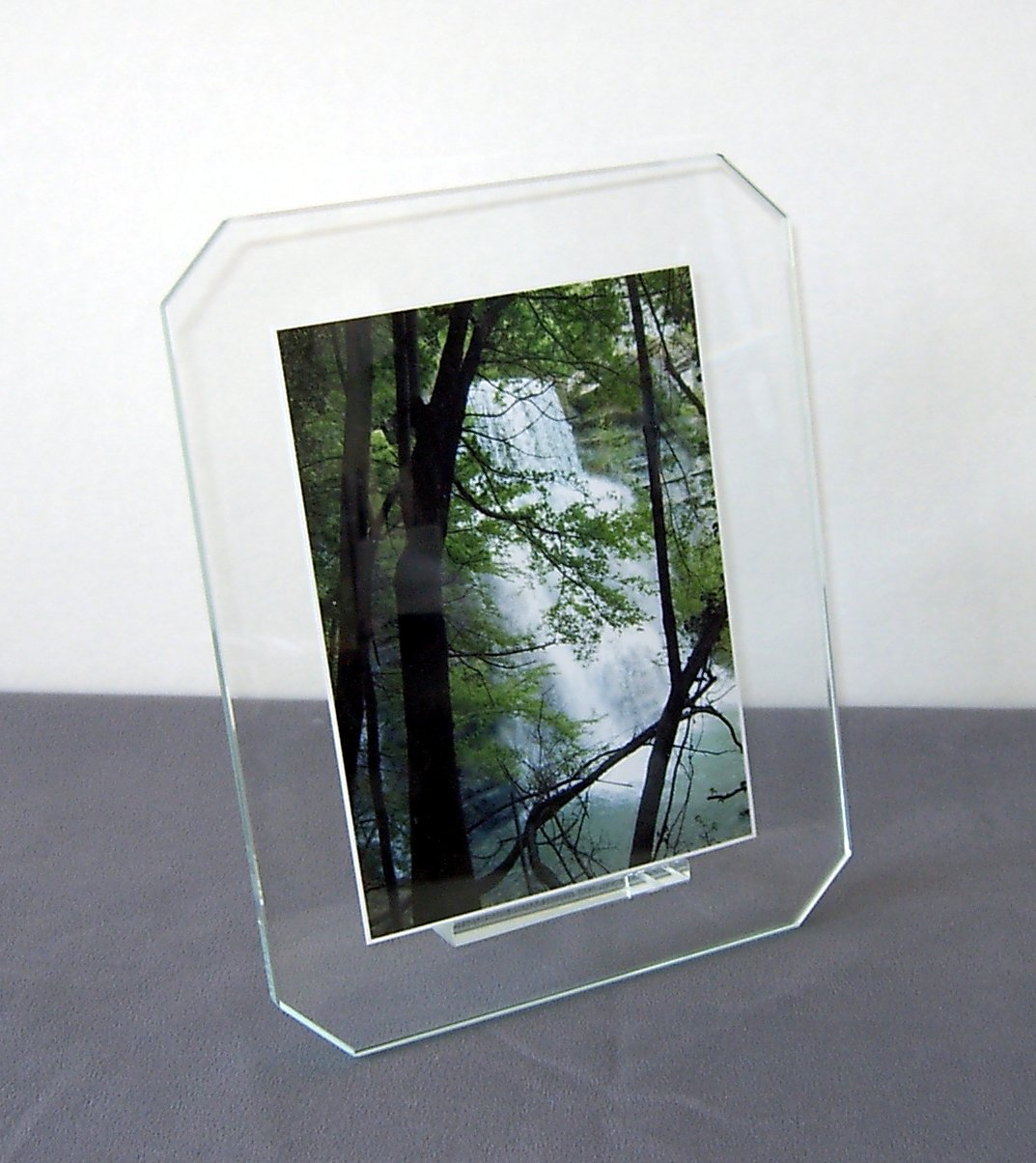 portafoto con alberi