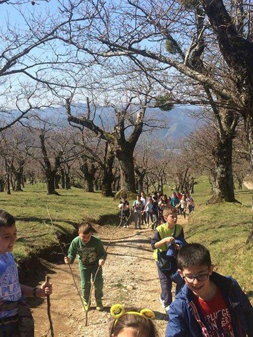 dei bambini che camminano in un sentiero di montagna