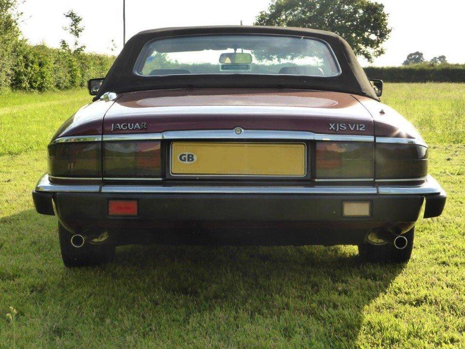 rear view of the Jaguar car