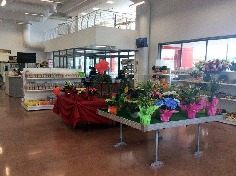 SVAL - Agricoltura Giardinaggio e Farmacia delle Piante