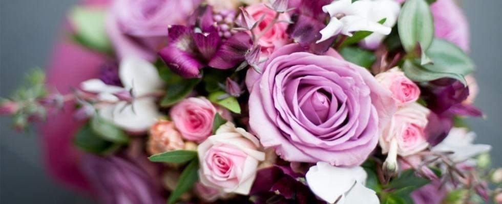 Vendita di fiori e piante