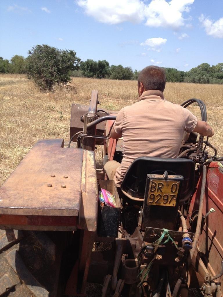 contadino durante un`aratura