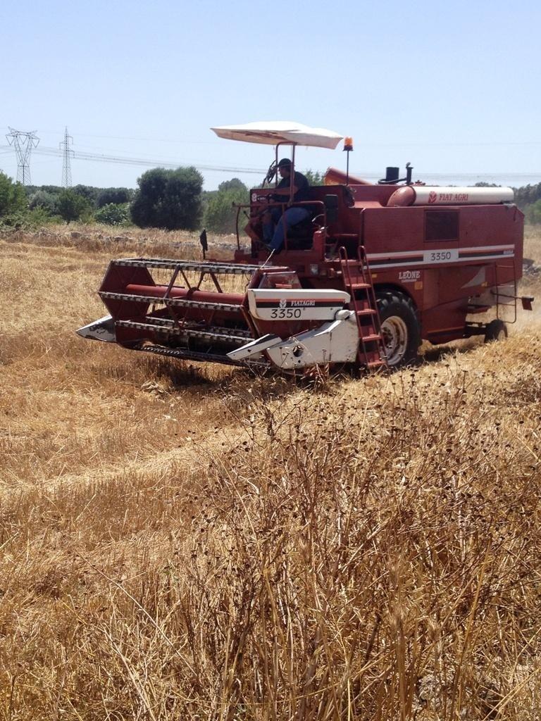 trattore in un campo
