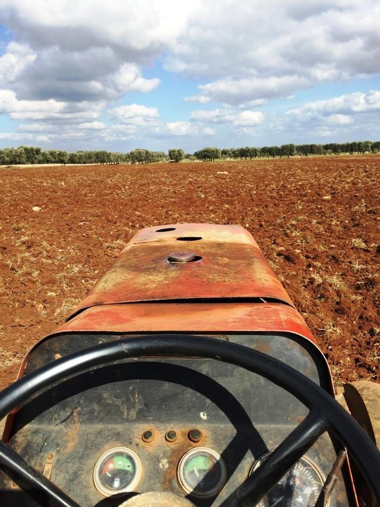 vista su un campo da un trattore