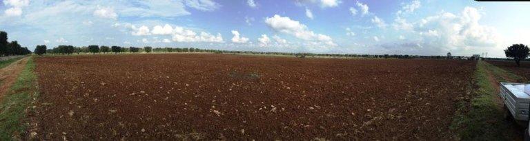 panoramica di un terreno