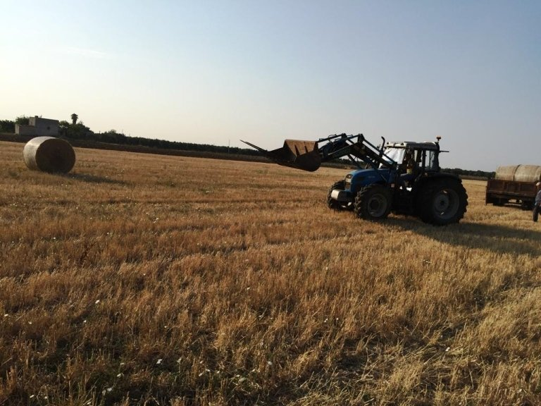panoramica campo di grano con trattore