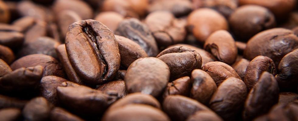 commercio caffè alessandria