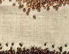 produzione caffè alessandria