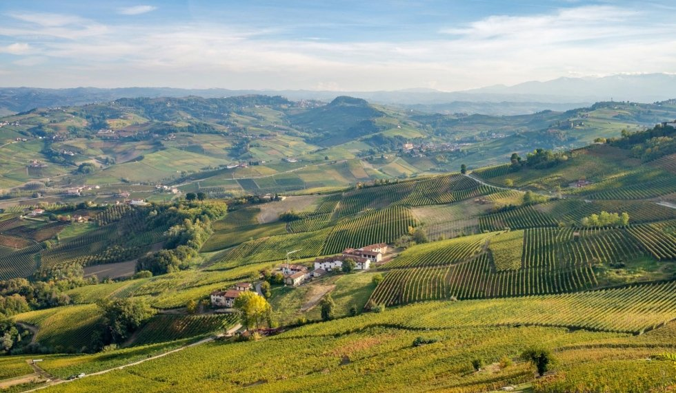 Car for sightseeing and wine tours