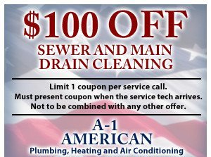 $100 off sewer and main drain cleaning