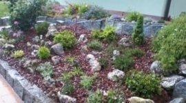 stella alpina, spiazzo, pietre decorative